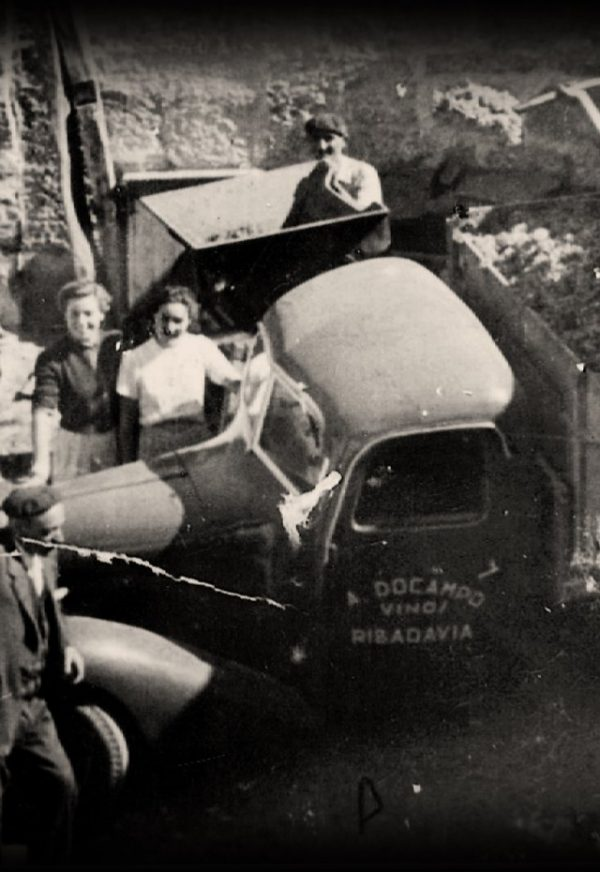 Vendimia Familia Docampo 1951